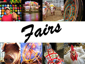 Tennessee State Fair and county fairs
